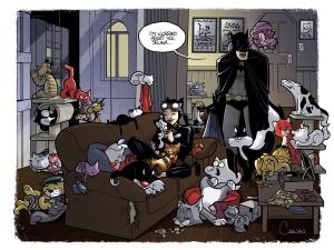 tumblr - catlady