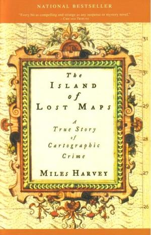 islandmaps