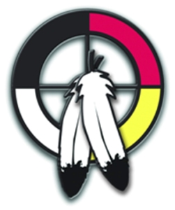 medicine wheel - the logo of the Indigenous Advisory Council
