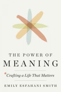 power of meaning cover