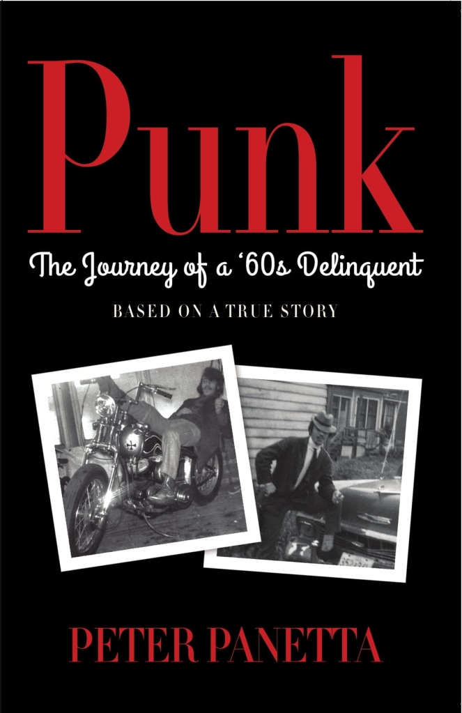 Punk cover