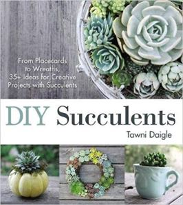 cover of diy succulents