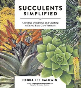 cover of succulents simplified