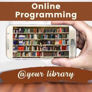 online programming banner