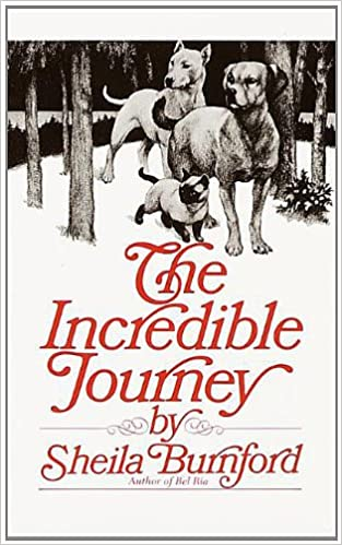 cover of The Incredible Journey